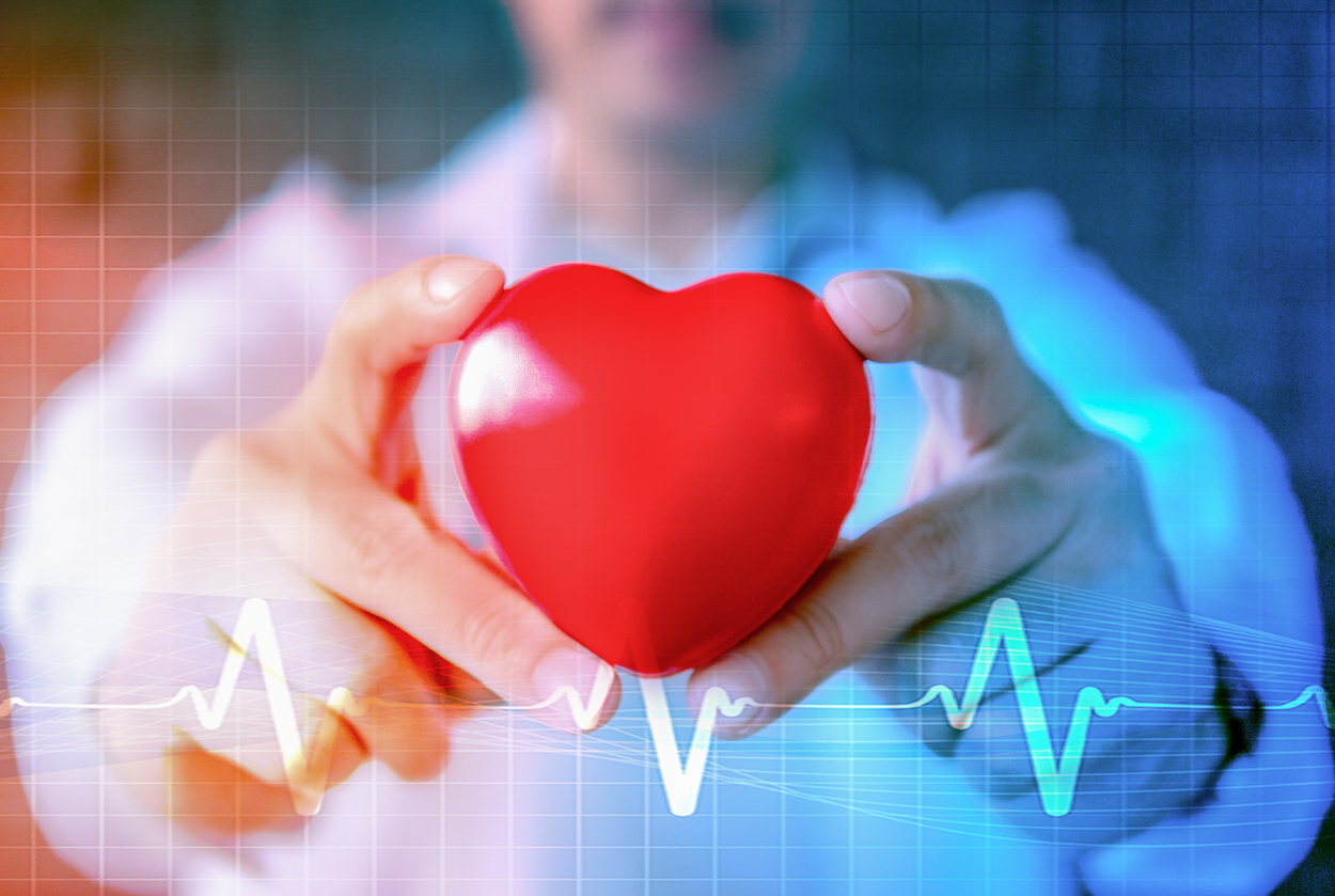 Doctor holding model of heart over answering is heart disease treatable